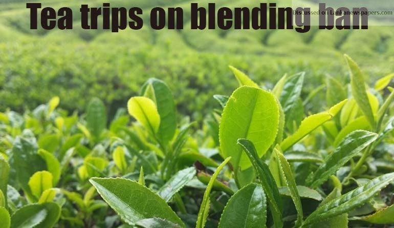 tea 2 in sri lankan news