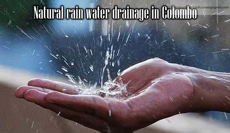 Sri Lanka News for Natural rain water drainage in Colombo