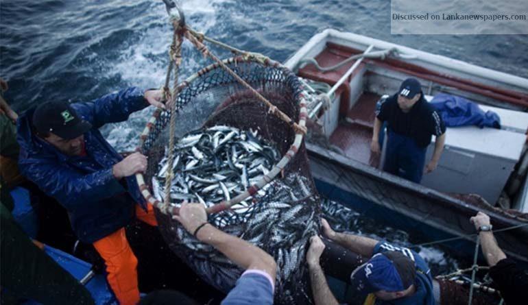 fisheries in sri lankan news