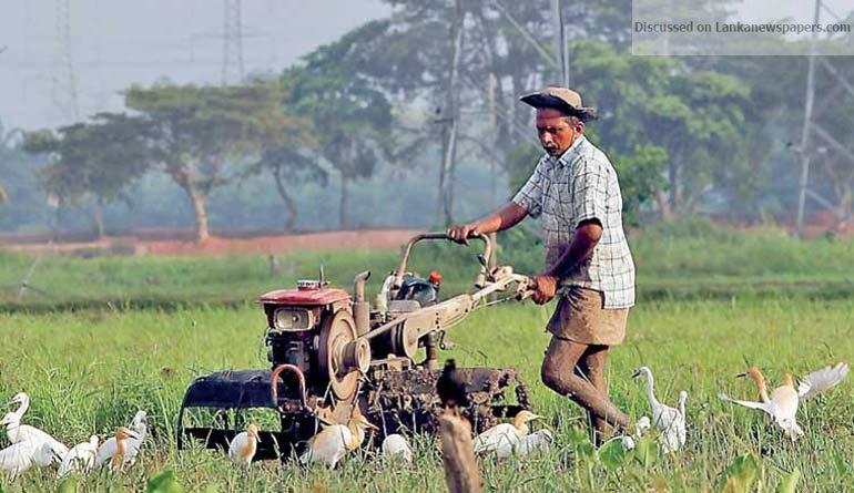 povert in sri lankan news