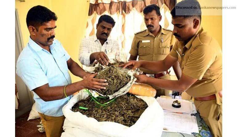 Sri Lanka News for Police seize 136-kg ganja, arrest four people