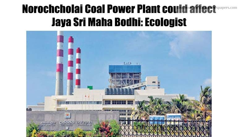 Sri Lanka News for Norochcholai Coal Power Plant could affect Jaya Sri Maha Bodhi: Ecologist