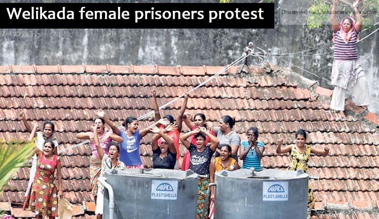 protest in sri lankan news