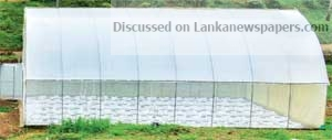 Sri Lanka News for Dialog with Universities Ruhuna and Moratuwa spearhead next-gen solutions for smallholder farmers