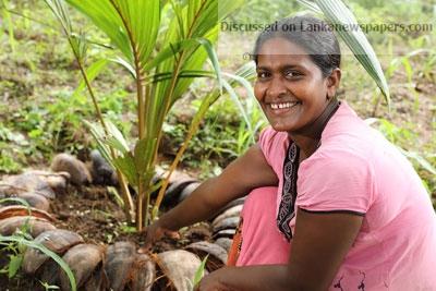 Sri Lanka News for Nestlé wins big for coconut kernel products at Presidential Export Awards