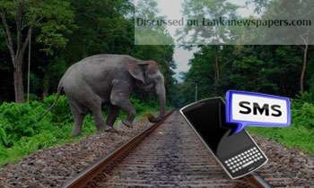 Sri Lanka News for Railways launches SMS alerts to prevent elephant collisions