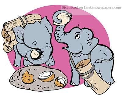 image 1544507956 63e495fff9 in sri lankan news