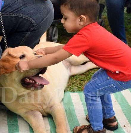 Sri Lanka News for All Breeds Championship Dog show