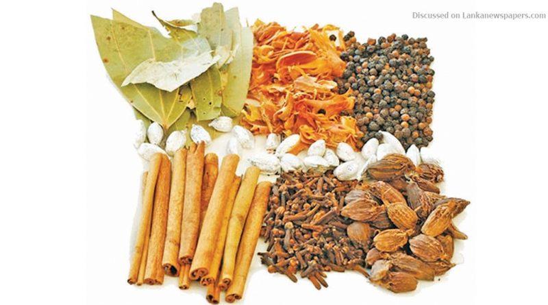 z pi SL exports in sri lankan news