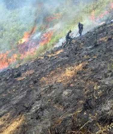 Sri Lanka News for SLAF troops douse forest fire at Panangala