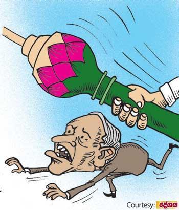 image 9cb1d25524 in sri lankan news