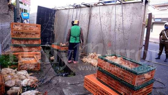 image 4620987698 in sri lankan news