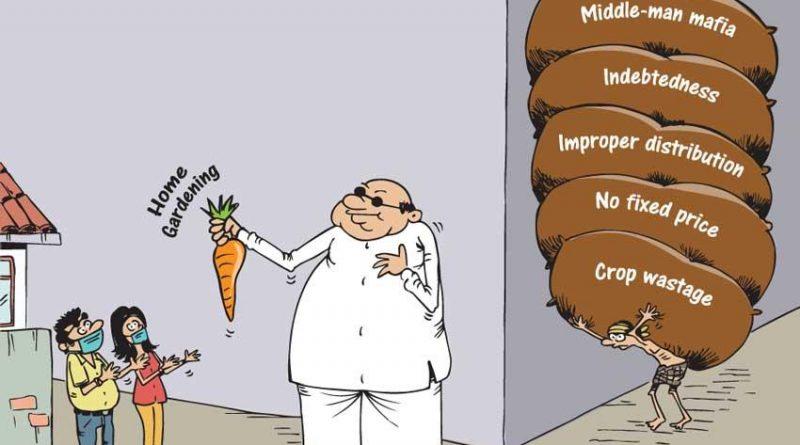 image 7058d5a011 in sri lankan news