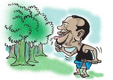 image e73e9c0309 in sri lankan news