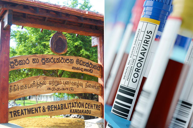 1594354087 Kandakadu rehab centre confirms 196 more Covid 19 cases l in sri lankan news