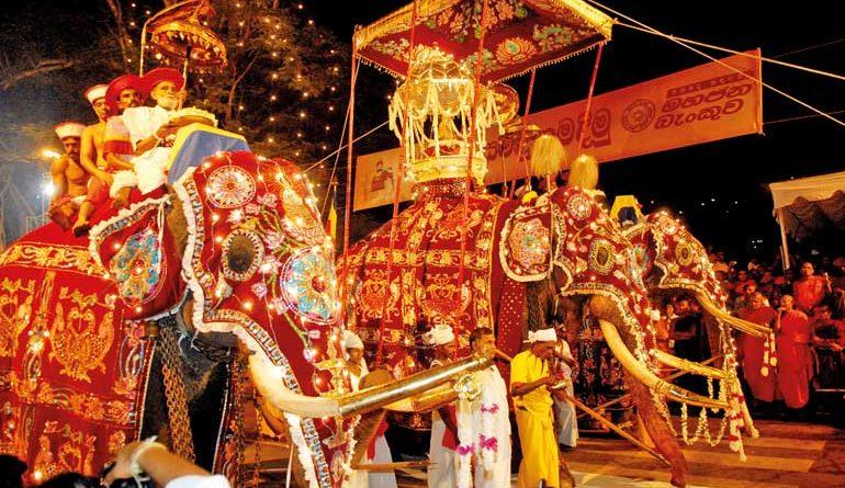 kandy perahera in sri lankan news