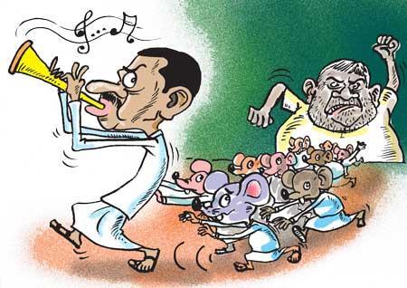 image 53d46d84bd in sri lankan news