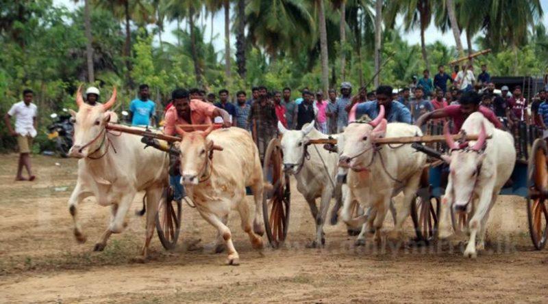 image c71d8b22df in sri lankan news