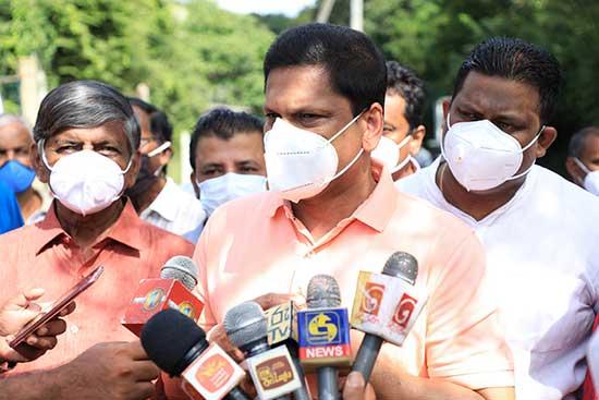 basil in sri lankan news