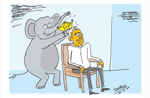 cartoon 11 in sri lankan news