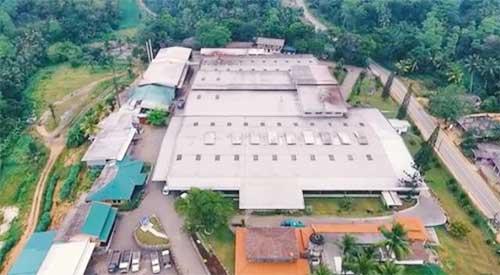 brombli in sri lankan news