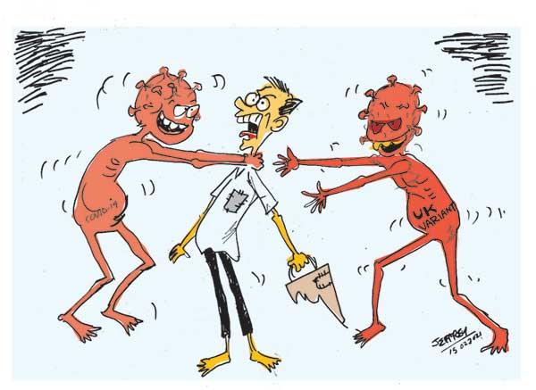 cartoon 15th in sri lankan news