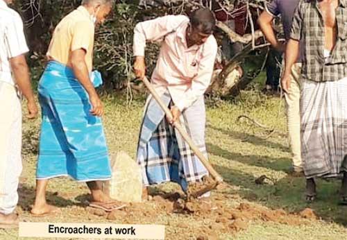 kotanwa in sri lankan news