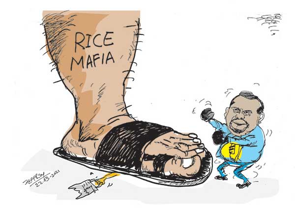 cartoon22nd in sri lankan news