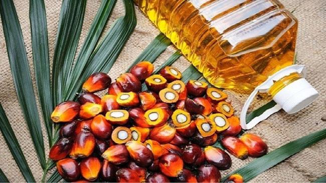 1617625719 President orders immediate ban on import of Palm oil B in sri lankan news