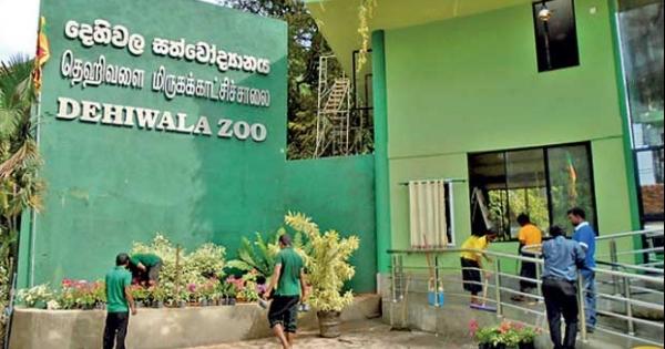 1620037202 Dehiwala zoo closed in sri lankan news
