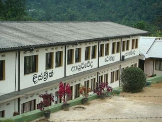 18020 in sri lankan news