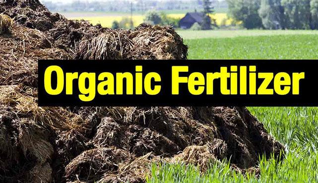 organic fertilizer production process 1 in sri lankan news